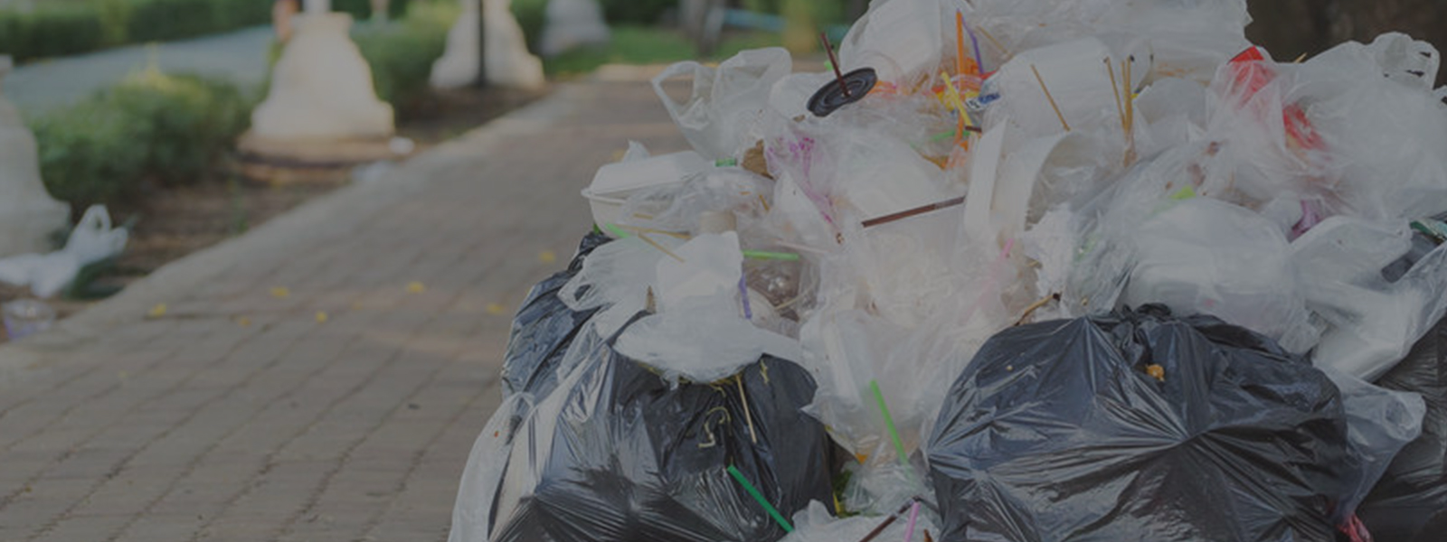 Waste-Management-Header-Image